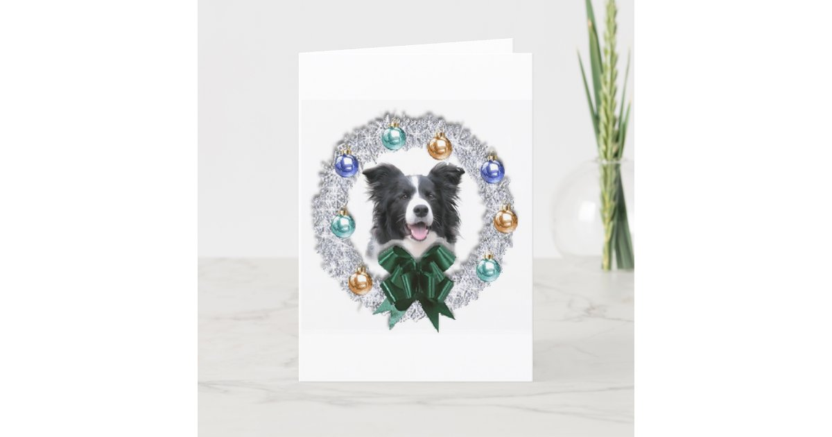 Border Collie Christmas Card | Zazzle.com