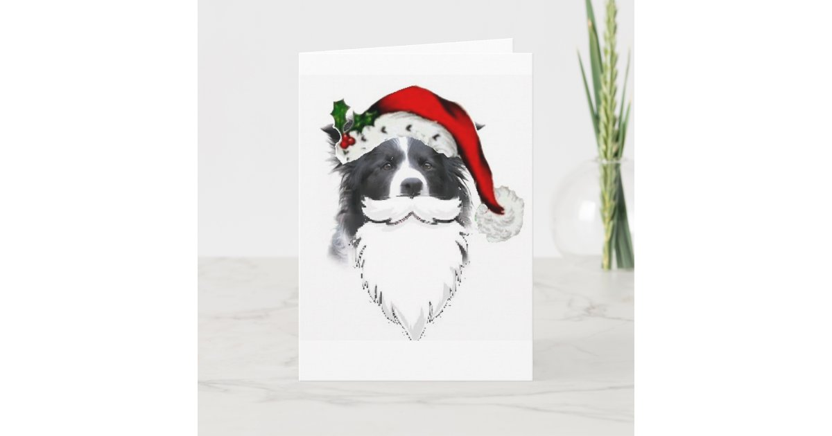 Border Collie Christmas Card~Santa With Beard Holiday Card | Zazzle.com