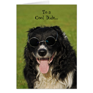 Border Collie Cool Dude Card