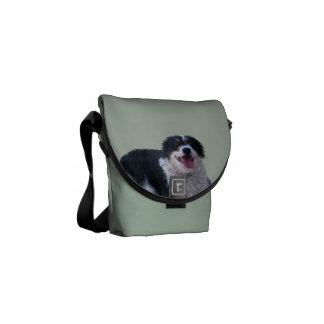 Border Collie Courier Bag