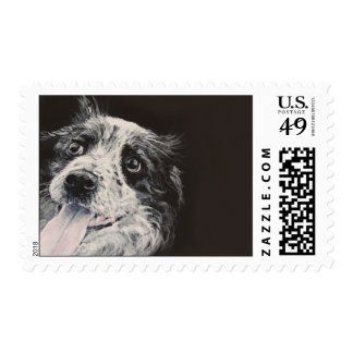 Border collie, customize me. postage