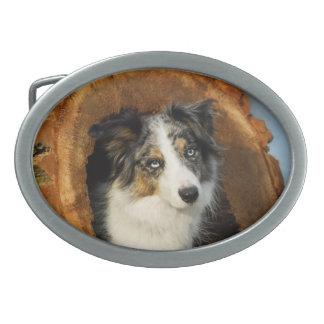 Border Collie cute dog Oval Belt Buckle