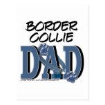Border Collie DAD Postcard