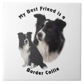 Border collie del mejor amigo azulejos