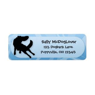 Border Collie Disc Dog Return Address Label