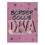 Border Collie DIVA Postcard