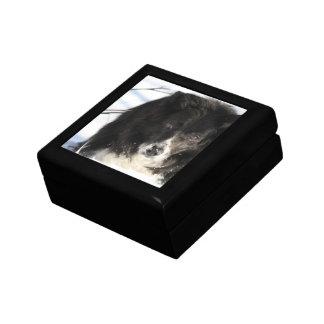 Border Collie Dog Gift Box