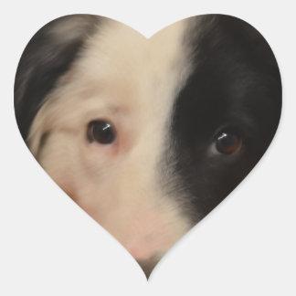 border collie dog heart sticker