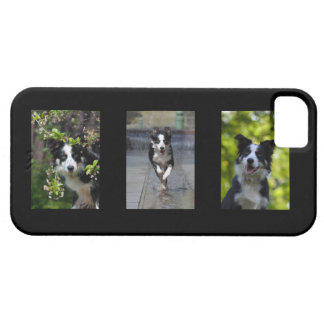 Border Collie dog lovers photo iphone 5 case