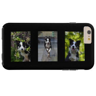 Border Collie dog lovers photo iphone 6 case