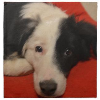 border collie dog napkin