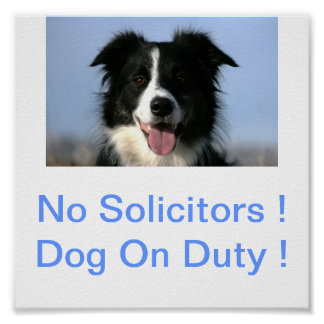 Border Collie Dog No Solicitors Dog on Duty Sign Poster
