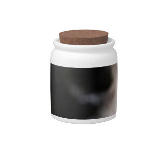 Border Collie Dog Nose Candy Jars