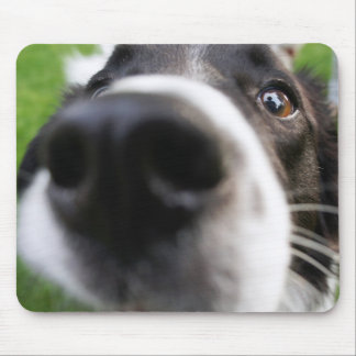 Border Collie Dog Nose Mouse Pad