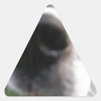 Border Collie Dog Nose Triangle Sticker