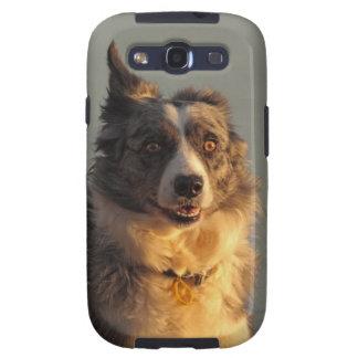 Border Collie Dog Running  Samsung Galaxy S Case Samsung Galaxy SIII Cover