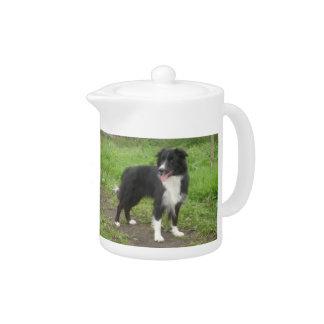 Border Collie Dog Teapot