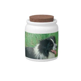 Border Collie Dog Treat Candy Jar