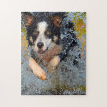Border Collie Dogs. Jigsaw Puzzle