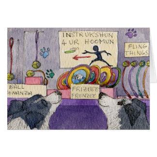 Border Collie dogs window shopping Greeting Card