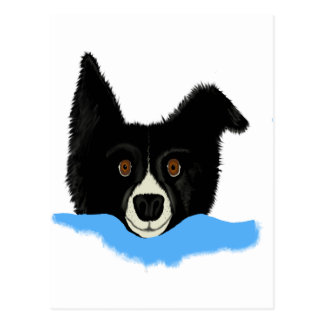 Border Collie Face Post Card