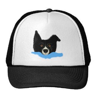 Border Collie Face Trucker Hat