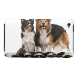 Border collie family iPod touch cover