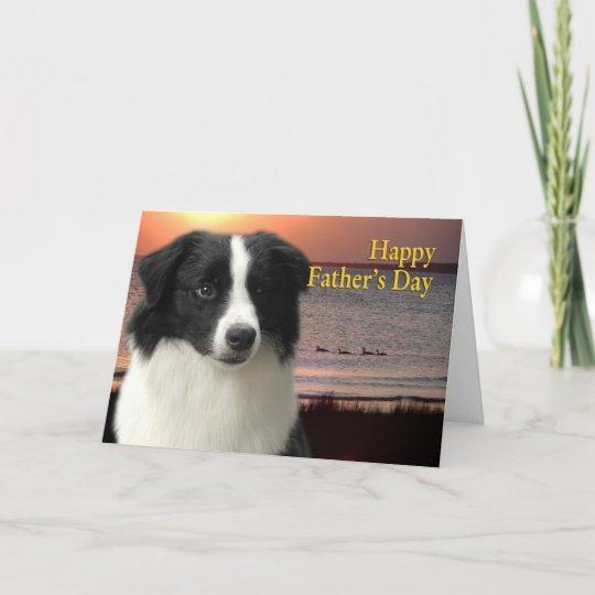 border collie father's day card  zazzle