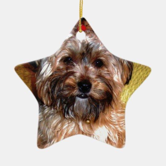 Border collie feliz adorno navideño de cerámica en forma de estrella