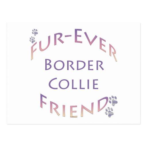 Border collie Furever Postal