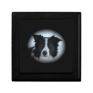 Border Collie Gift Boxes