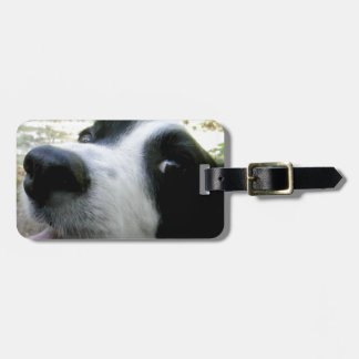 Border Collie Gifts Bag Tag