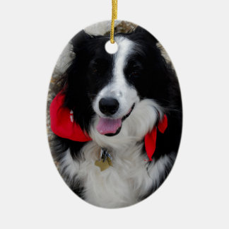 Border Collie Gifts Ornaments