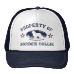 Border collie gorra