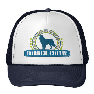 Border collie gorras