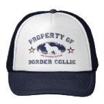 Border collie gorros bordados