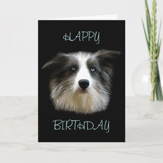 border collie happy birthday card  zazzle