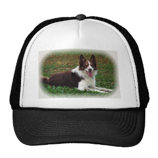 Border Collie Trucker Hats