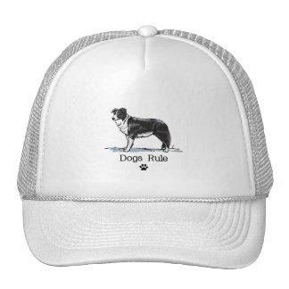 Border Collie Hats