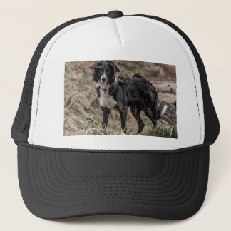 Border Collie Hat/Cap Trucker Hat