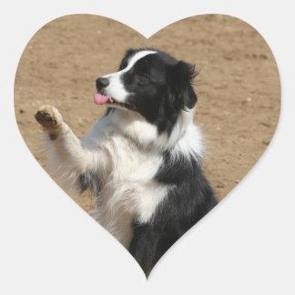 border collie heart sticker