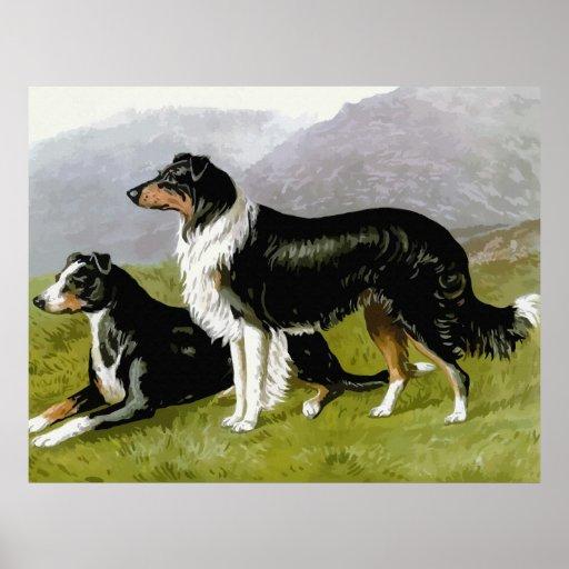 Anglo Saxon Dog Breeds