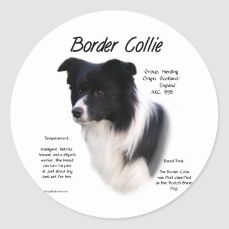 Border Collie History Design Sticker