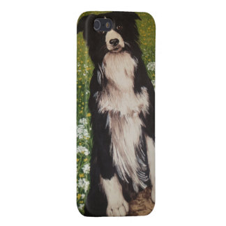 BORDER COLLIE I PHONE CASE FOR iPhone SE/5/5s