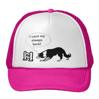 border collie in crisis trucker hat