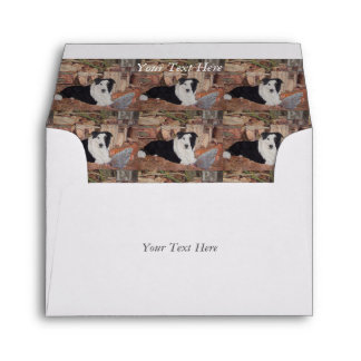 border collie in log shed with chickens portrait envelope