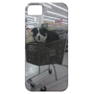 Border Collie in Shopping Case
