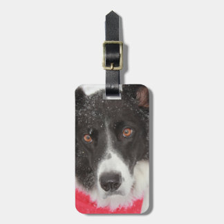 Border Collie in Snow Luggage Tag