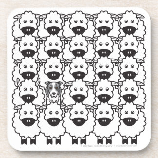 Border Collie in the Sheep Drink Coaster
