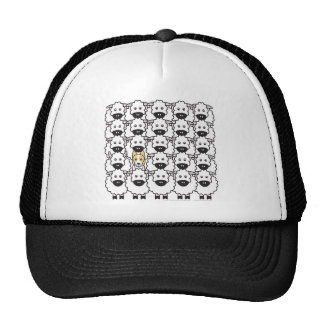 Border Collie in the Sheep Trucker Hats